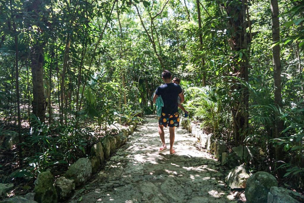 Dad holding toddler walking through Cenote Azul stone path through jungle trees