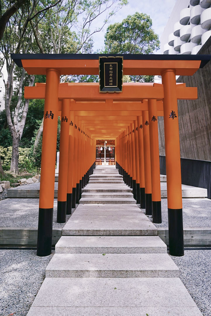 Awesome day trips from Osaka with kids