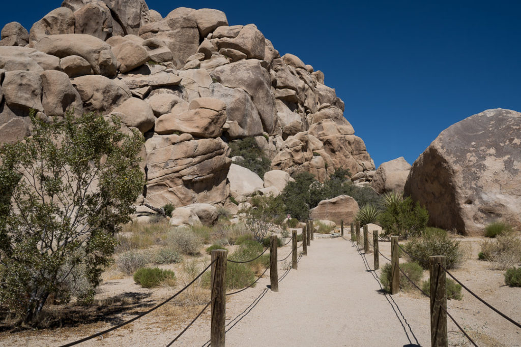 Joshua Tree boulders hiking trail - family travel tips during covid